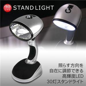 30LEDlight.jpg
